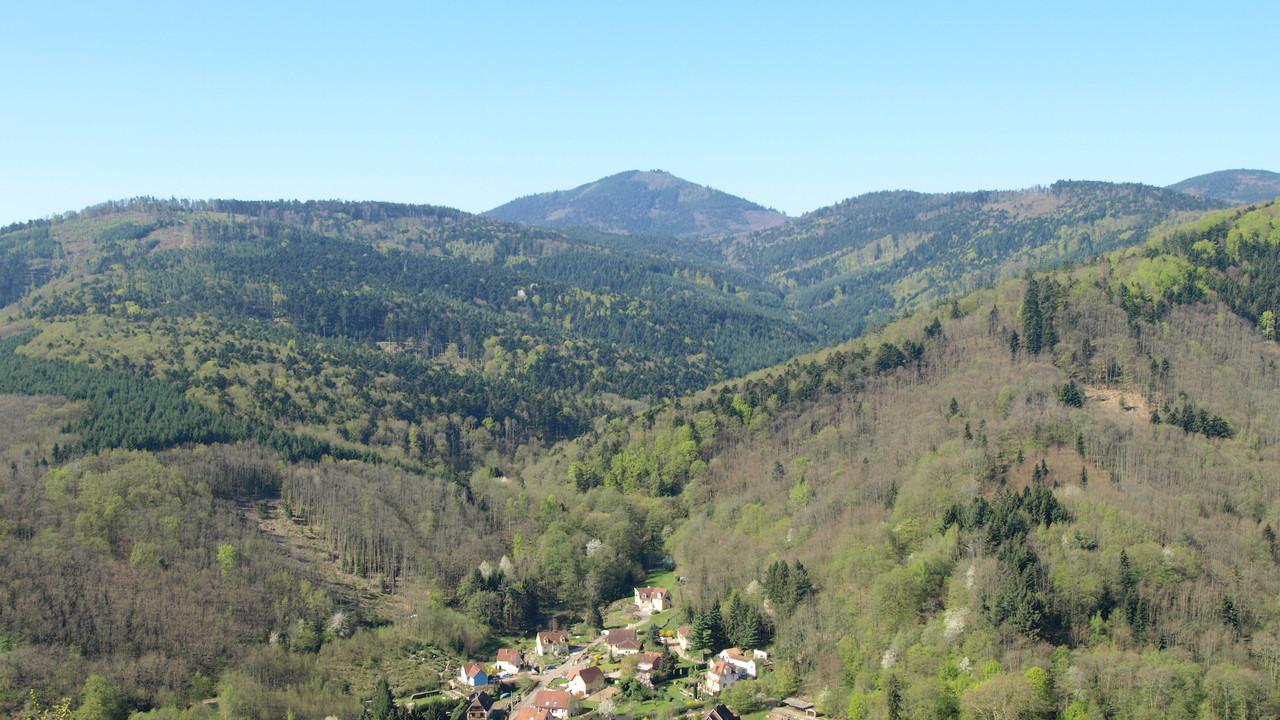 Ungersberg