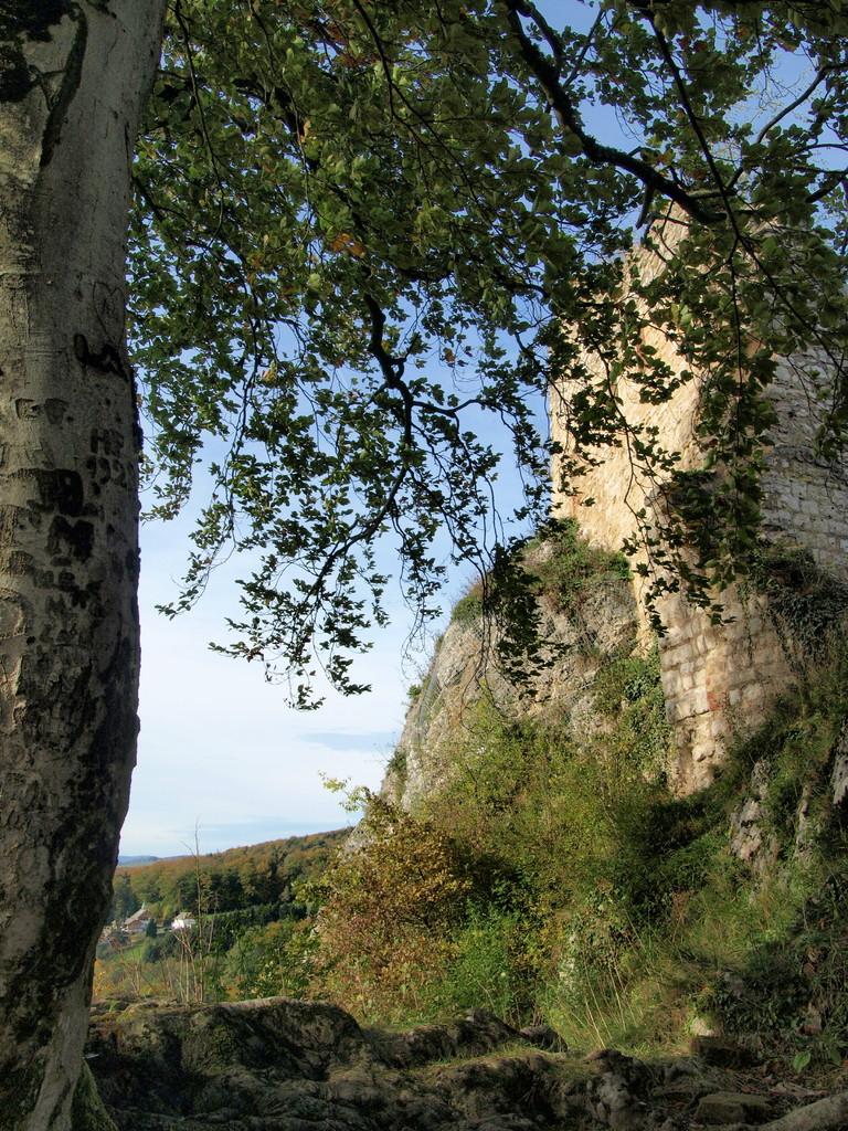 Château supérieur