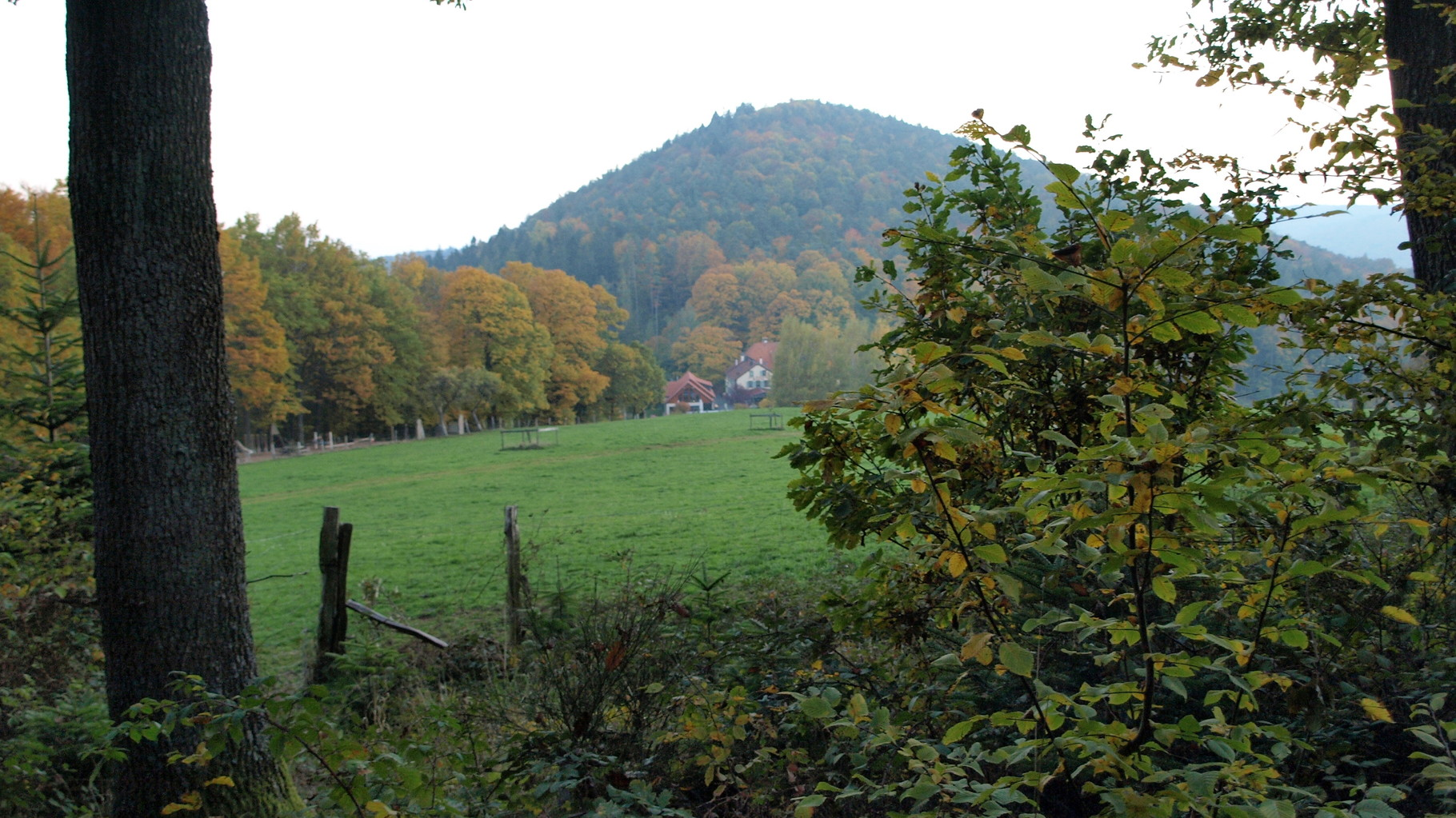 Gimbelhof