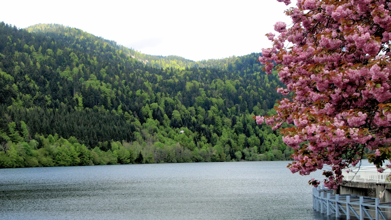 Lac de Kruth Wildenstein