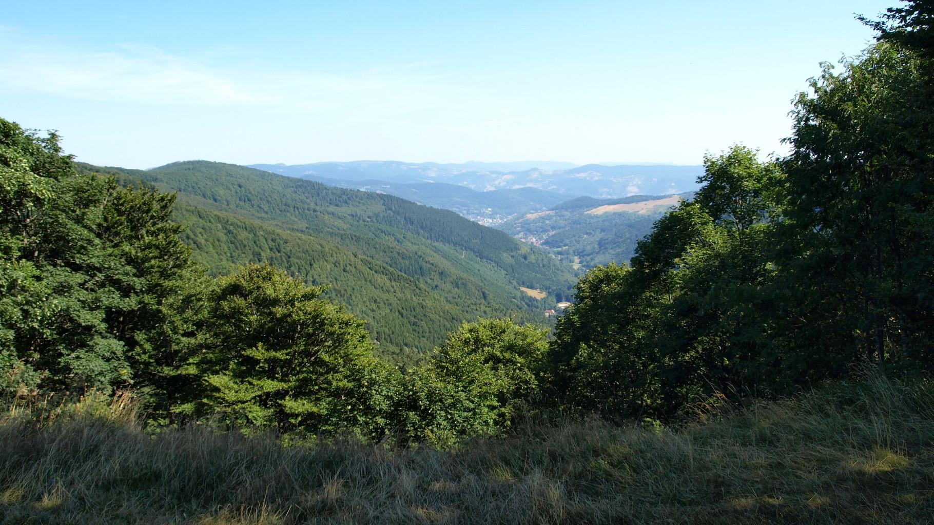 Oberlauchen : la Grande Vallée