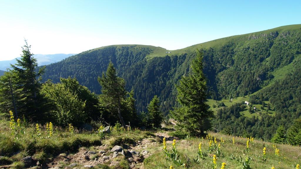 Hohneck Et Tour Du Kastelberg