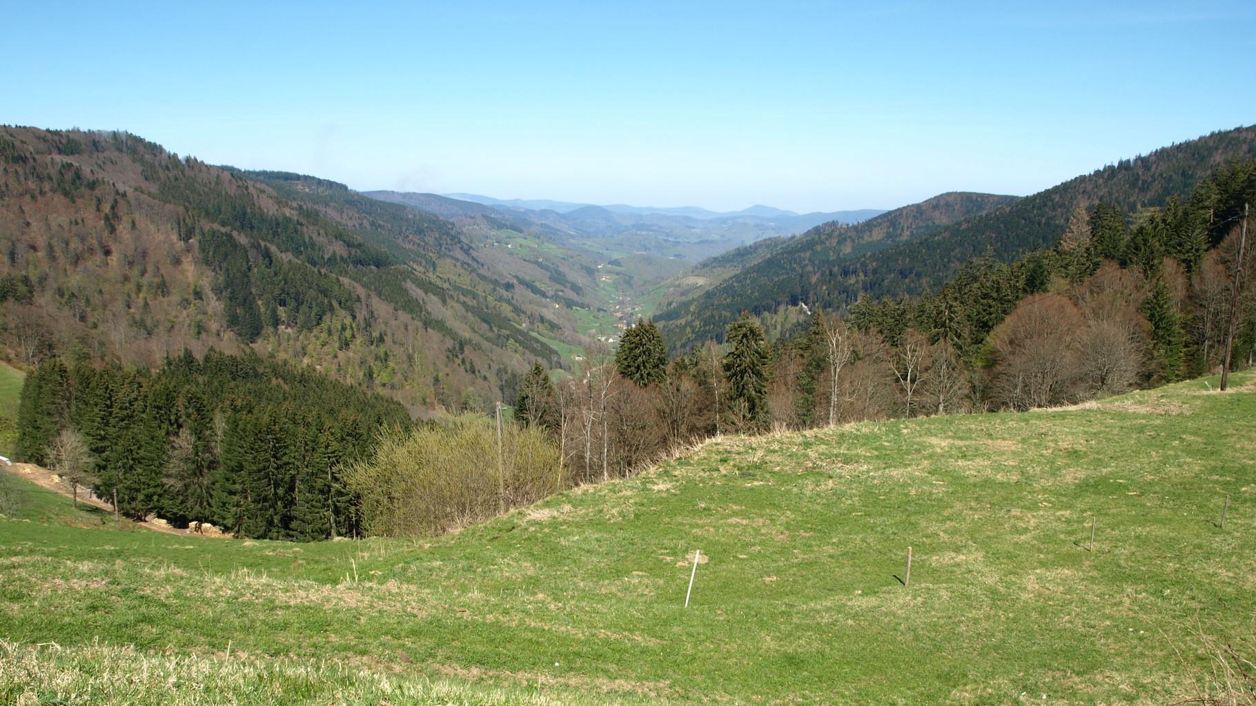 Bagenelles : vallée de Sainte Marie aux Mines