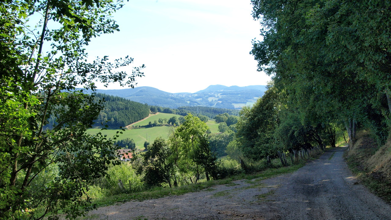 Arrivée au Col du Chamont : au loin, Labaroche