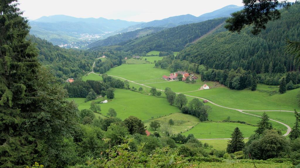 Vallon de Rammersbach