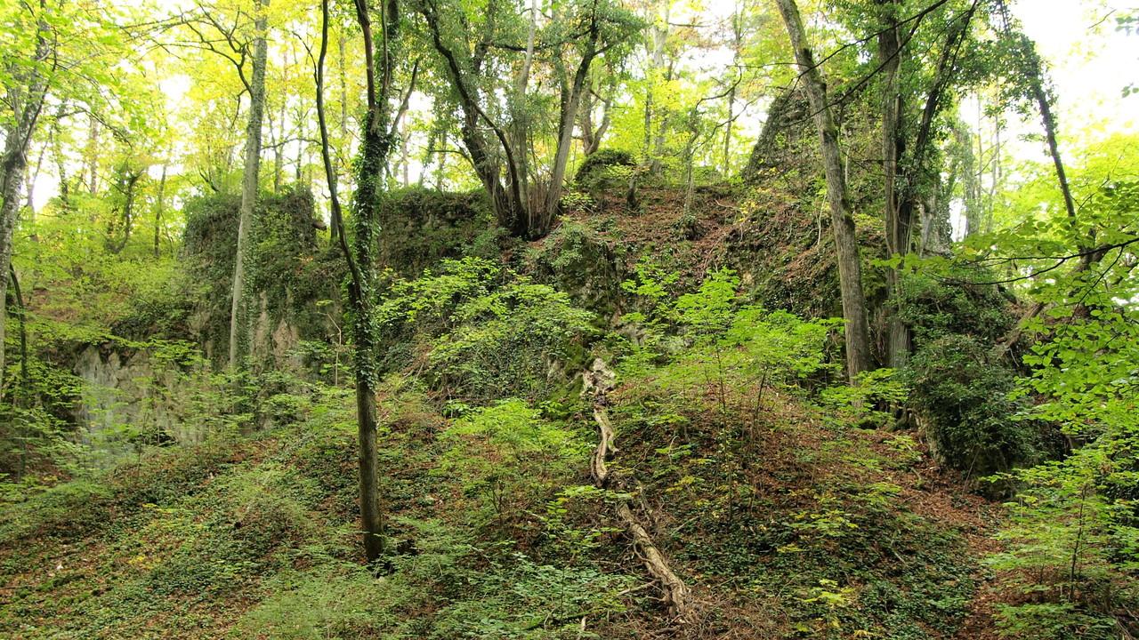 ruines de Waldeck