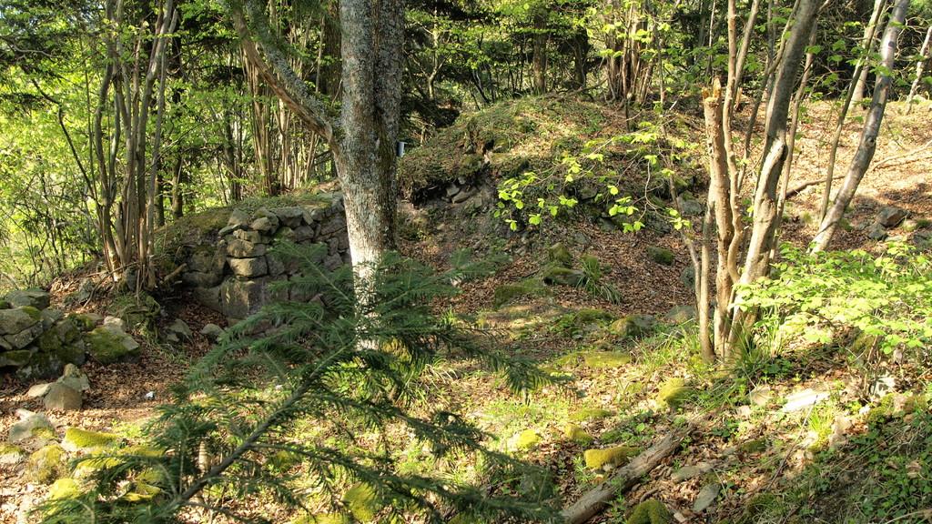 Ruine du Hattstatt