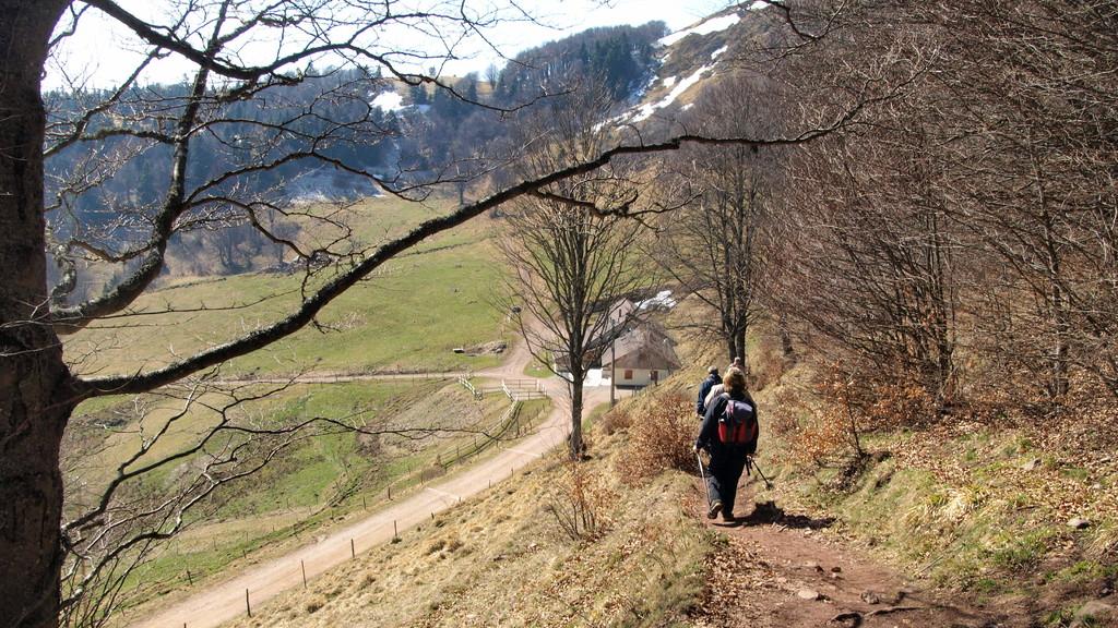 Arrivée au Strohberg