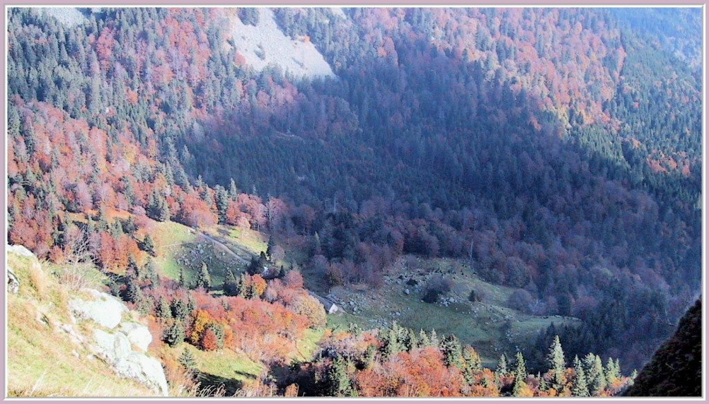 Le Frankenthal en automne
