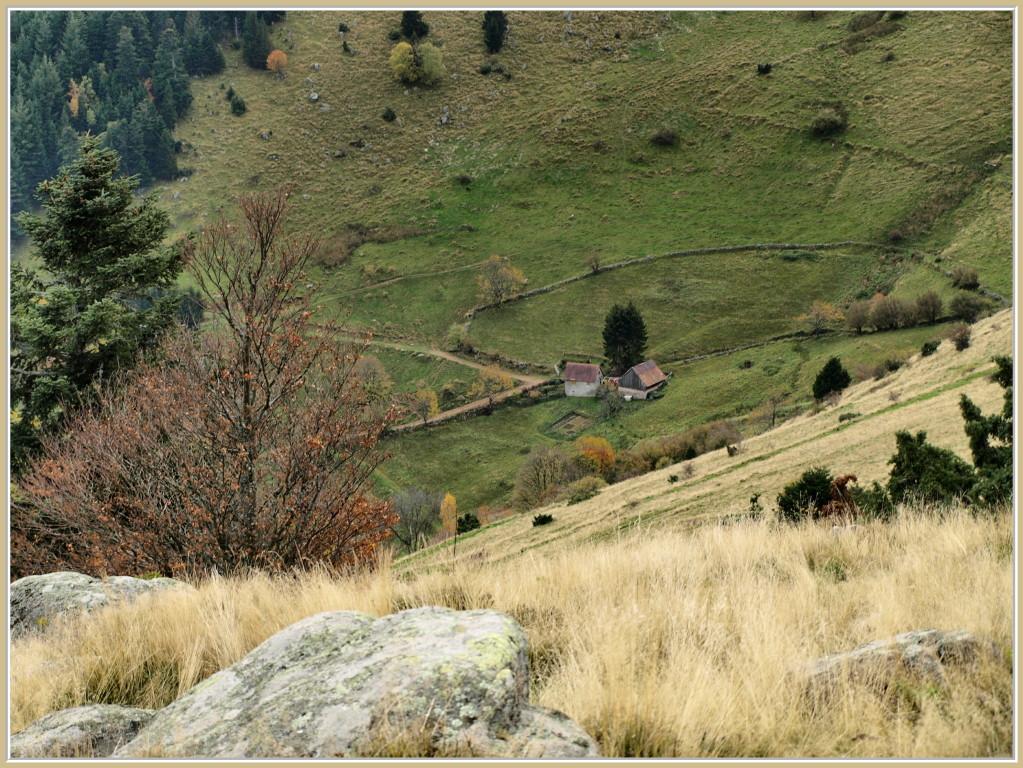 Ancienne ferme d'alpage près de Buchwald