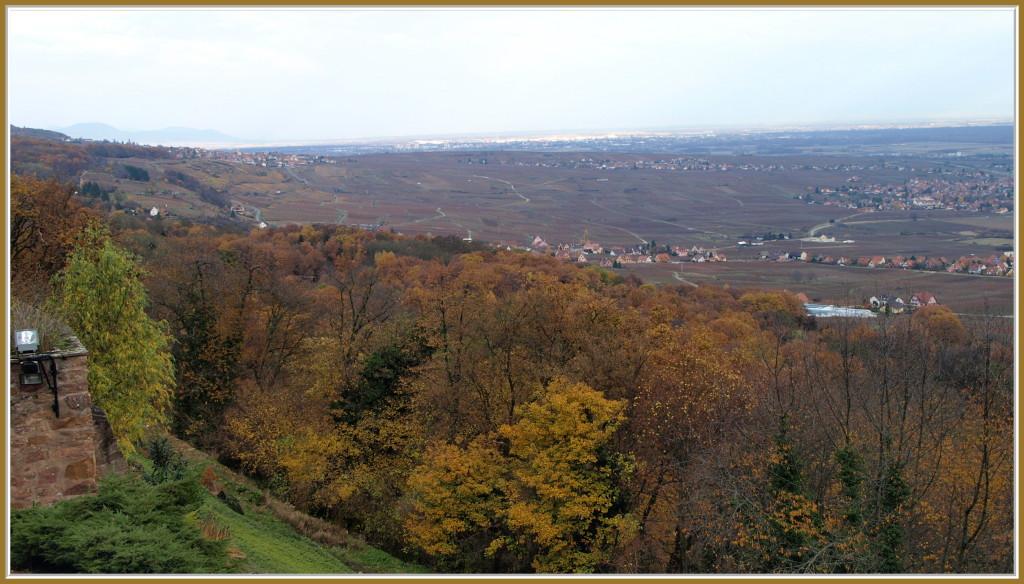 La Plaine d'Alsace vue du Schauenberg