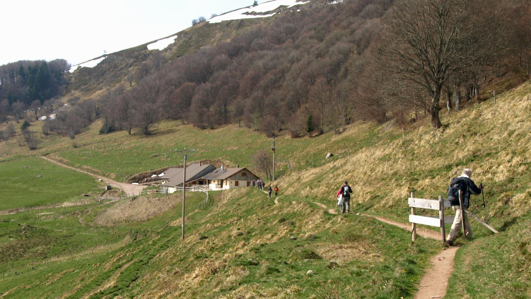 Strohberg