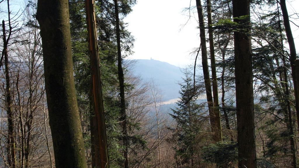 Au loin l'Ortenbourg