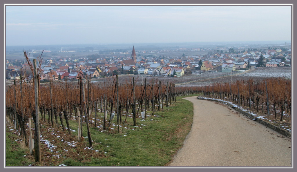 Arrivée à Wettolsheim