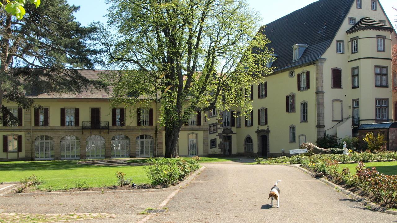 Château d'Anthès à Soultz