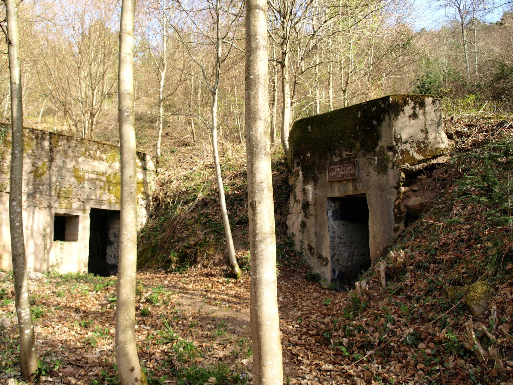 Blockhaus Roumain
