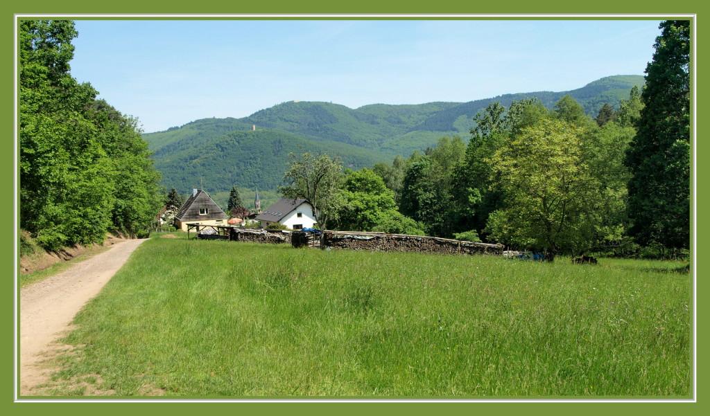 Retour sur Zimmerbach et vue sur le Pflixbourg et le Hohlandsbourg