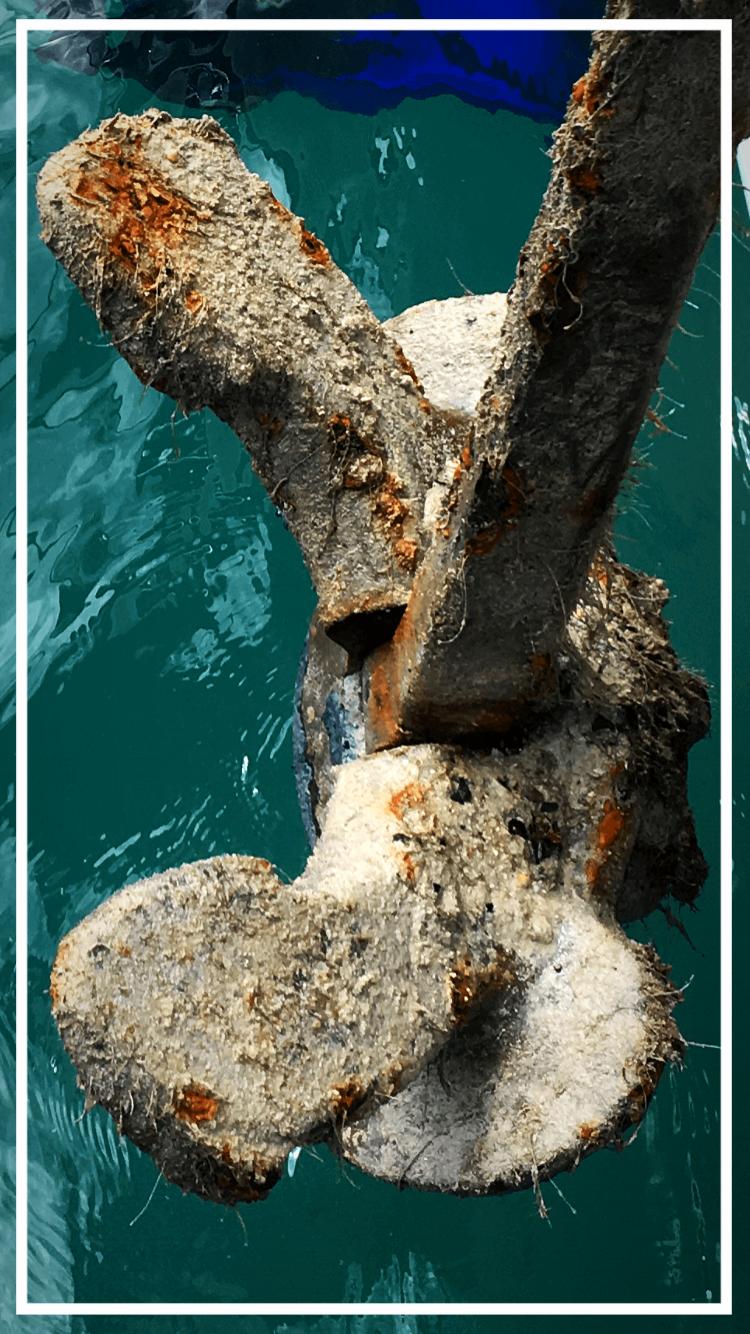 alten Anker unterm Boot gefunden und geborgen