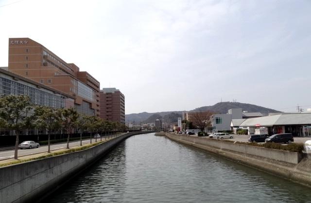 御座船入江川、山城橋からの眉山 左の建物は徳島文理大学