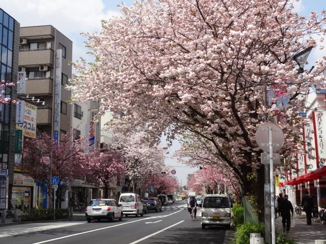 用賀、二子玉川駅方面を望む