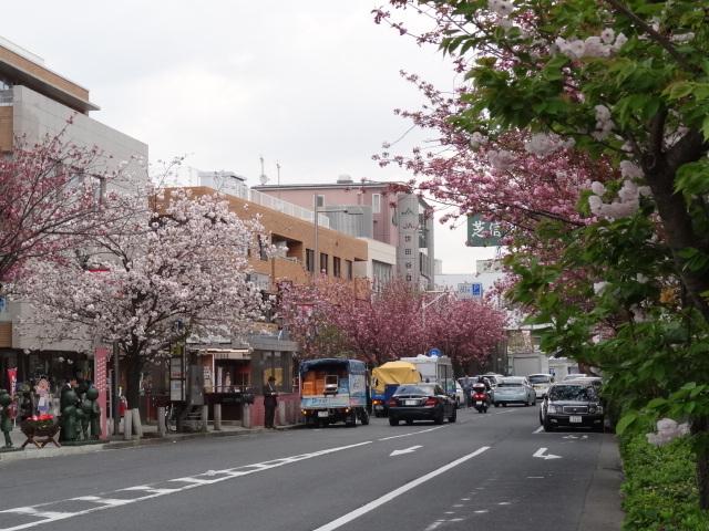 駒沢大学、三軒茶屋駅方面を望む