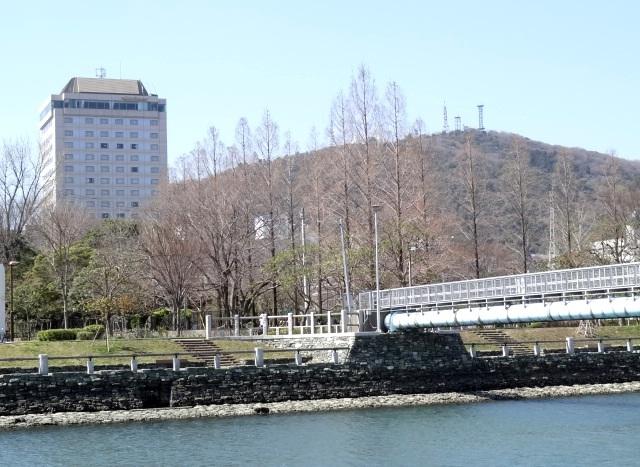 助任川河岸緑地からの眉山 左の建物はホテルクレメント