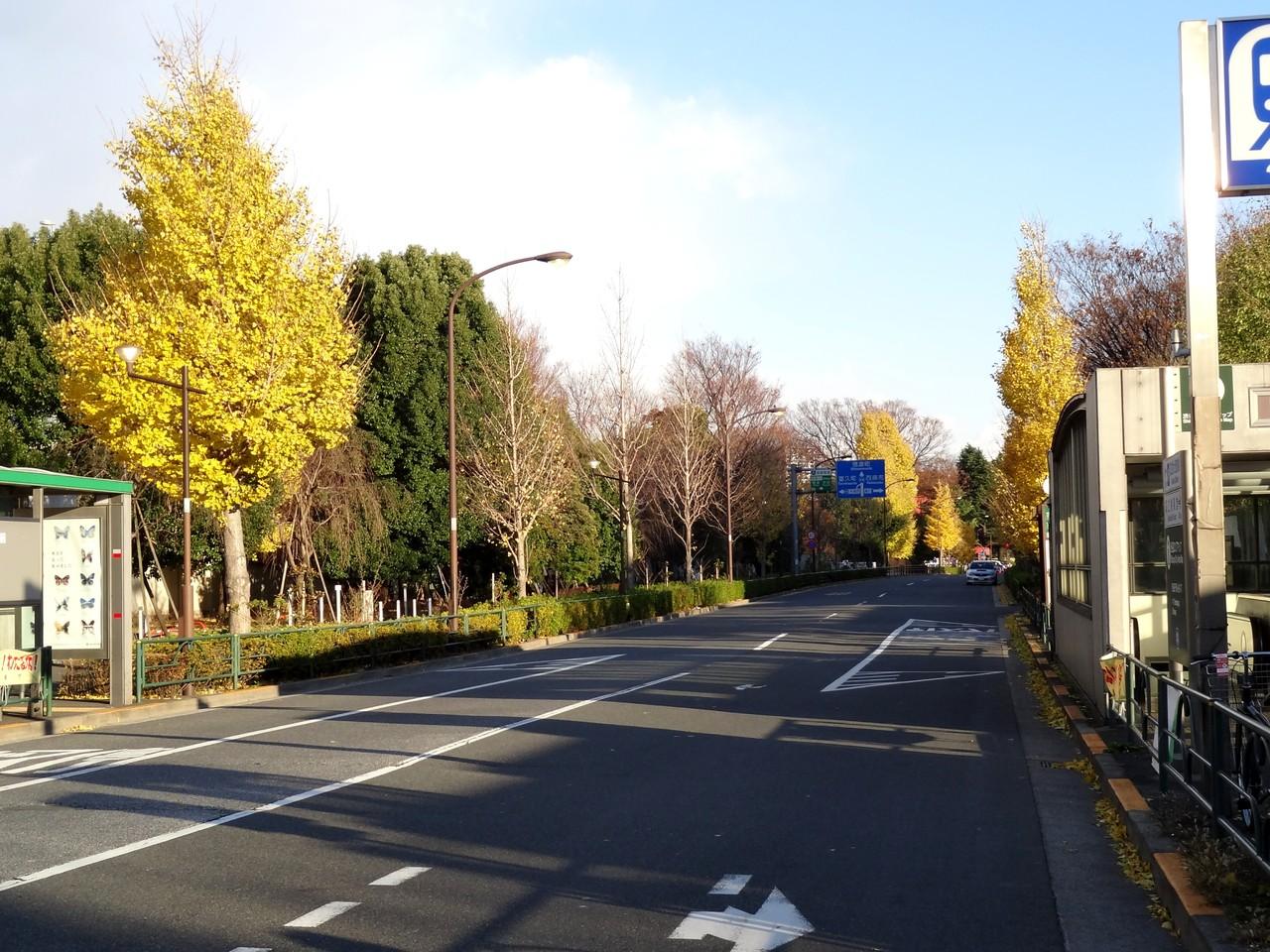 千駄ヶ谷駅前、右は都営地下鉄大江戸線「国立競技場」駅