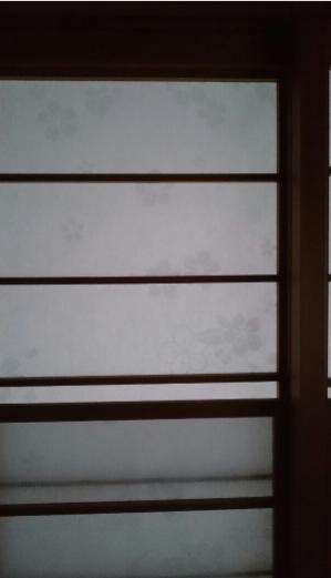 雪見障子に和紙タイプの桜です