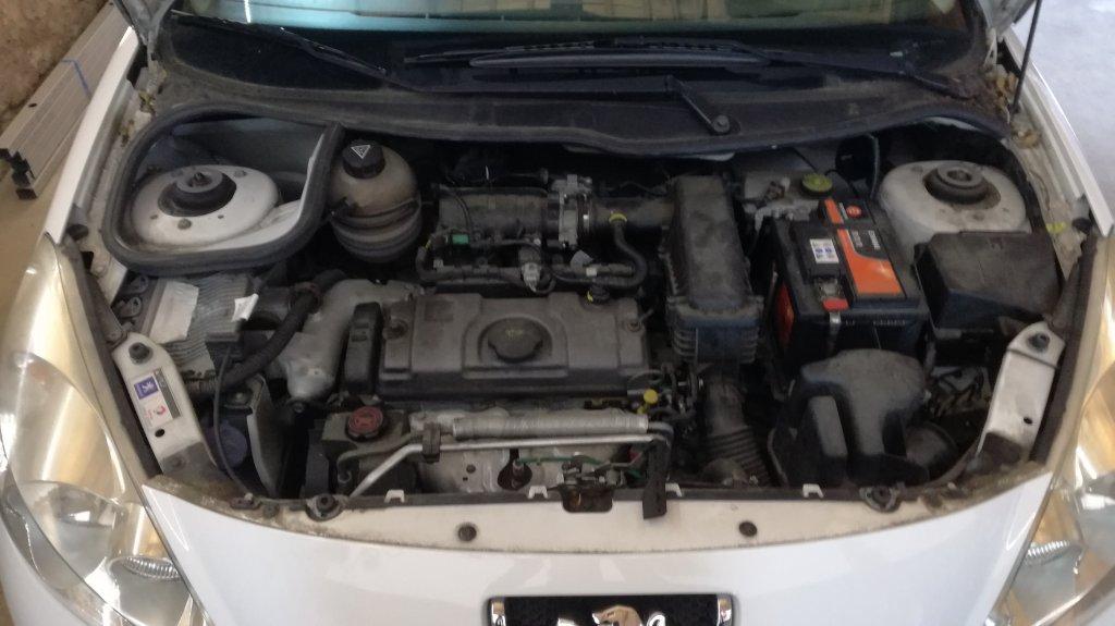 206 1.1 TU 60 cv - E85