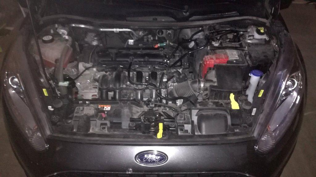 Ford Fiesta 1.25 Zetec - E85