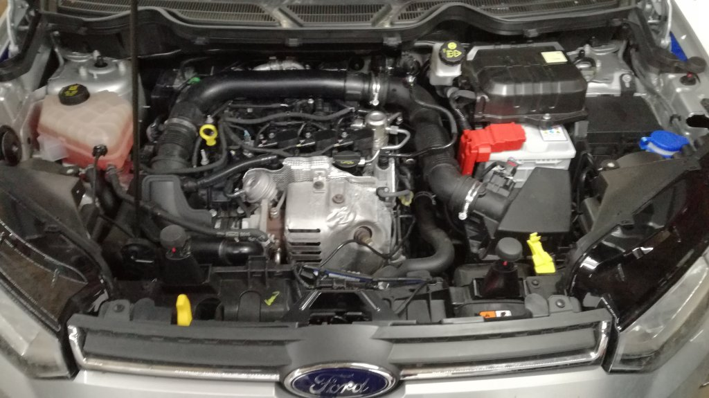 Ford Ecosport  1.0 Ecoboost  - E85