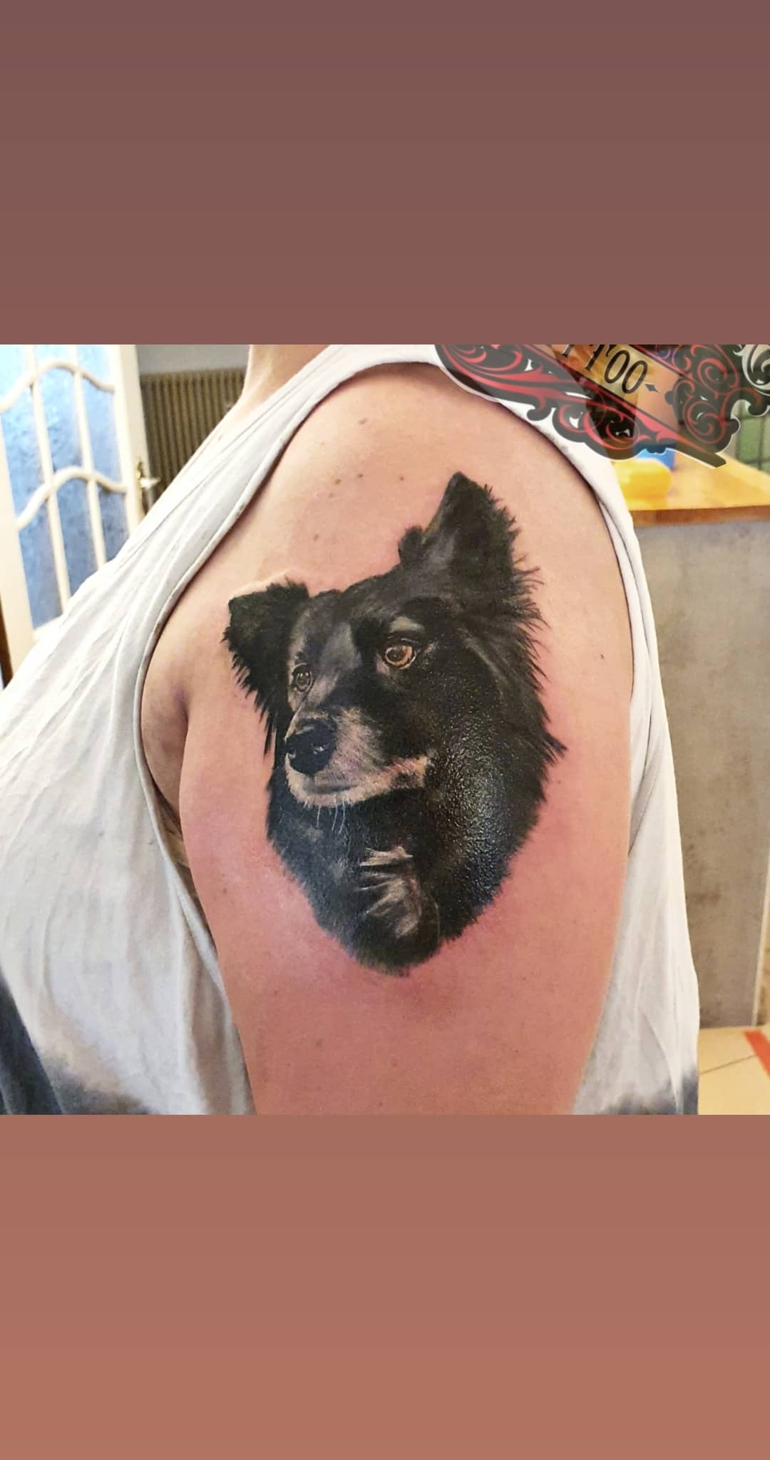 #hundeportrait #coverup #tattoo #bremen