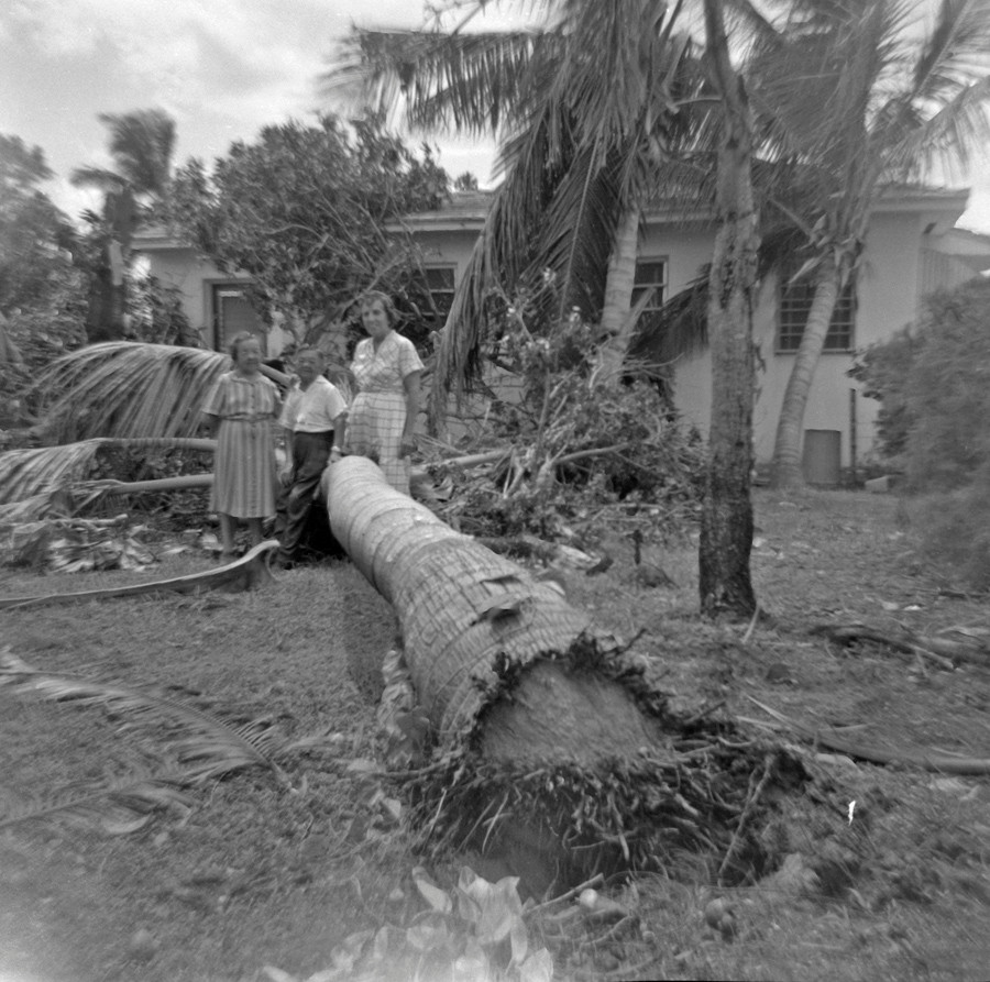 "Next day after the ""Cleo"" storm. 1964"
