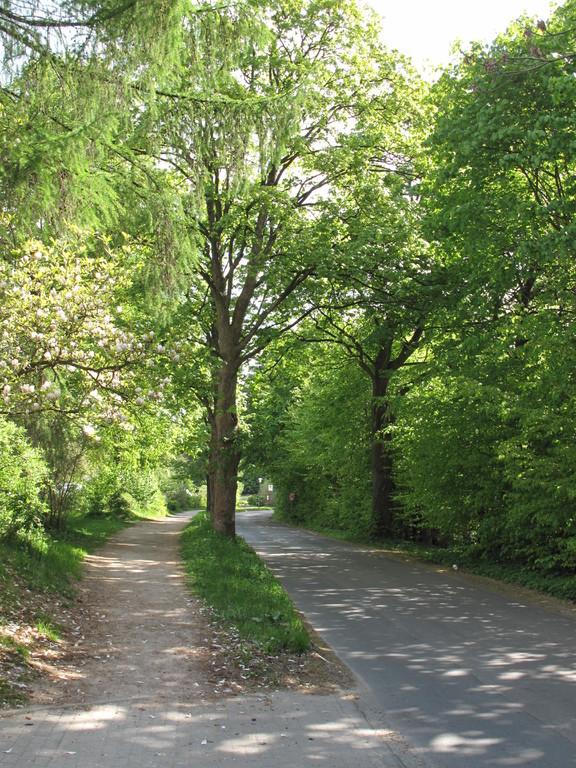 Bornkampsweg