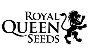 Royal Queen Seeds - Autofiorenti