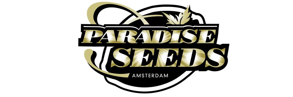 Paradise Seeds logo sementi cannabis