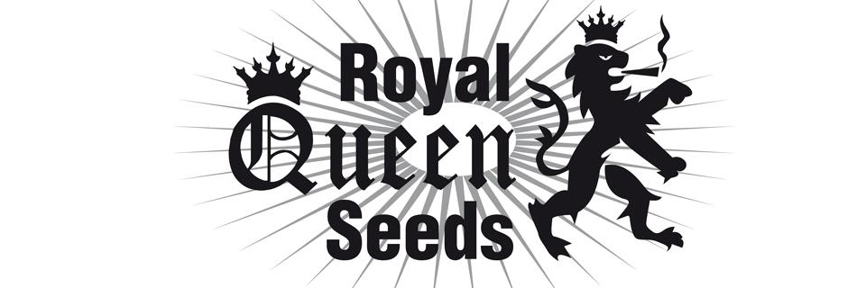 Royal Queen Seeds logo semi cannabis da collezione a Brescia