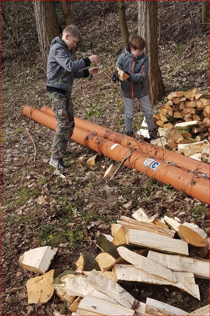 ...die besten Holzstapler am Waldsee!