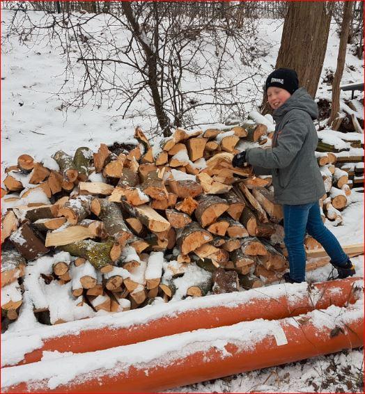 Ganz schön viel Holz am See :-)