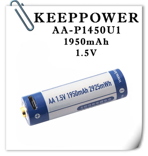 KeepPower P1450U1 AA 1.5V