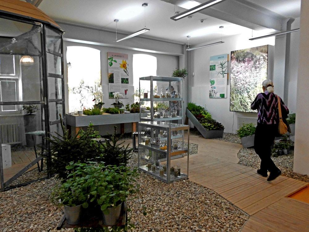 """Thema """"kräuter"""" in der Blumenhalle"""