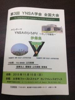 YNSA山元式新頭鍼療法