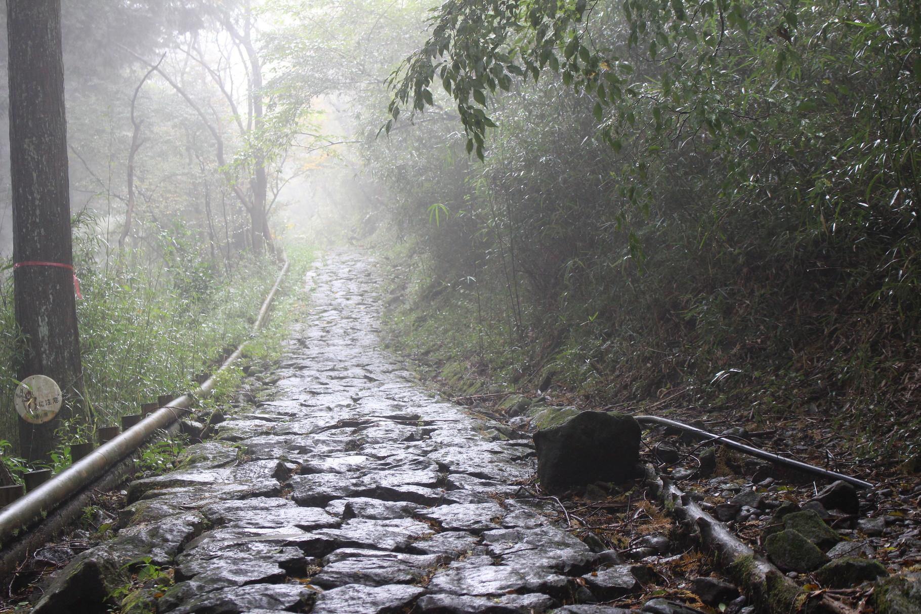 2015年10月に箱根へ社員研修旅行に行きました。 今年6月に箱根山の噴火がありましたが、安心して旅行を楽しみました。 写真は、箱根旧街道の石畳の記念撮影です。石材との関わりがありますので、こういった林道にある石畳に触れることは、石仕事にいい影響が出そうです。