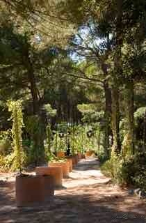 The Garden of 5 senses, St Marc Jaumegarde, Aix-en-Provence