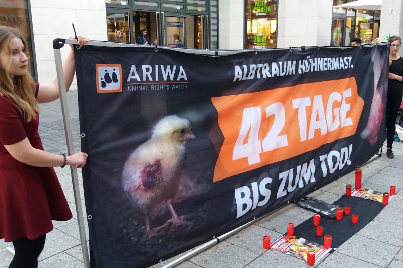 """Protestaktion """"42 Tage bis zum Tod"""" vor Wiesenhof-Betrieb in Rietberg"""