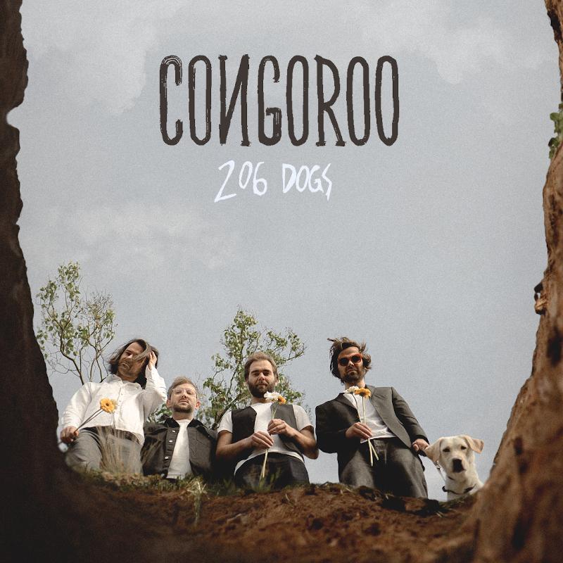 CONGOROO - 206 dogs