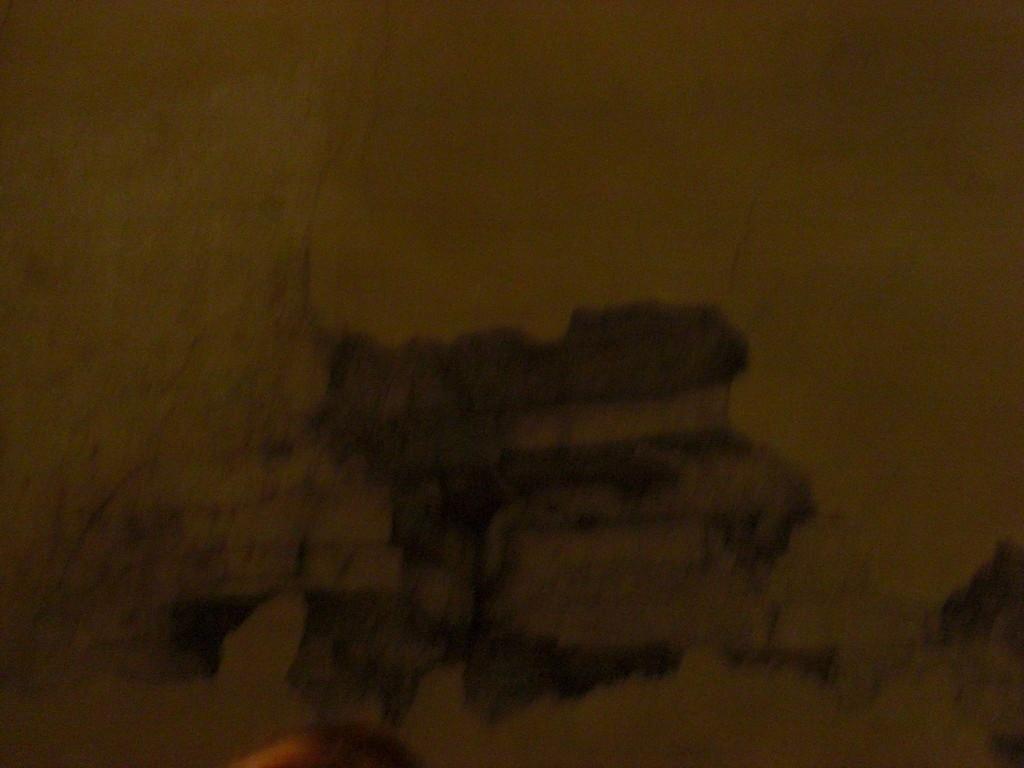 レオナルド・ダ・ヴィンチが壁に描いたデッサンですって‼ぶれてるけど