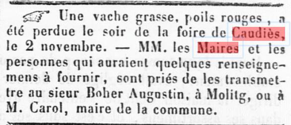 Foire vache 1860