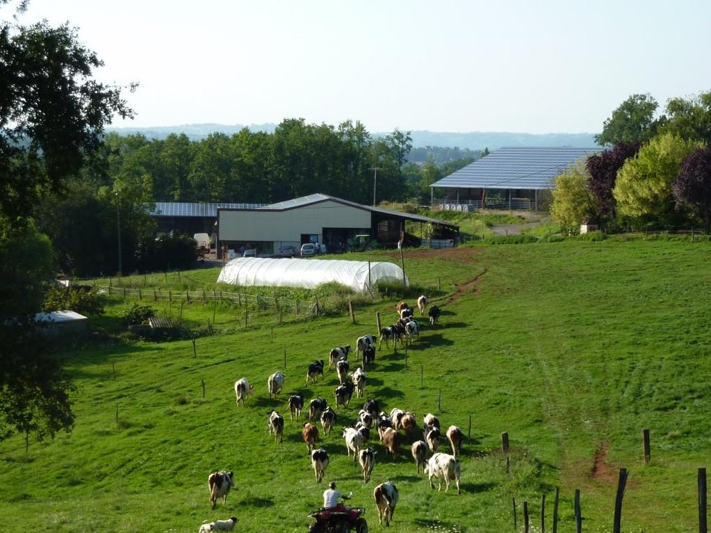 La ferme, au fond les panneaux photovoltaïques recouvrant les bâtiments
