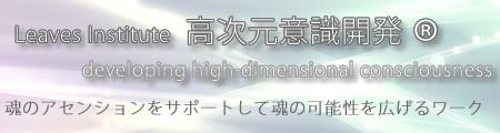 高次元意識開発